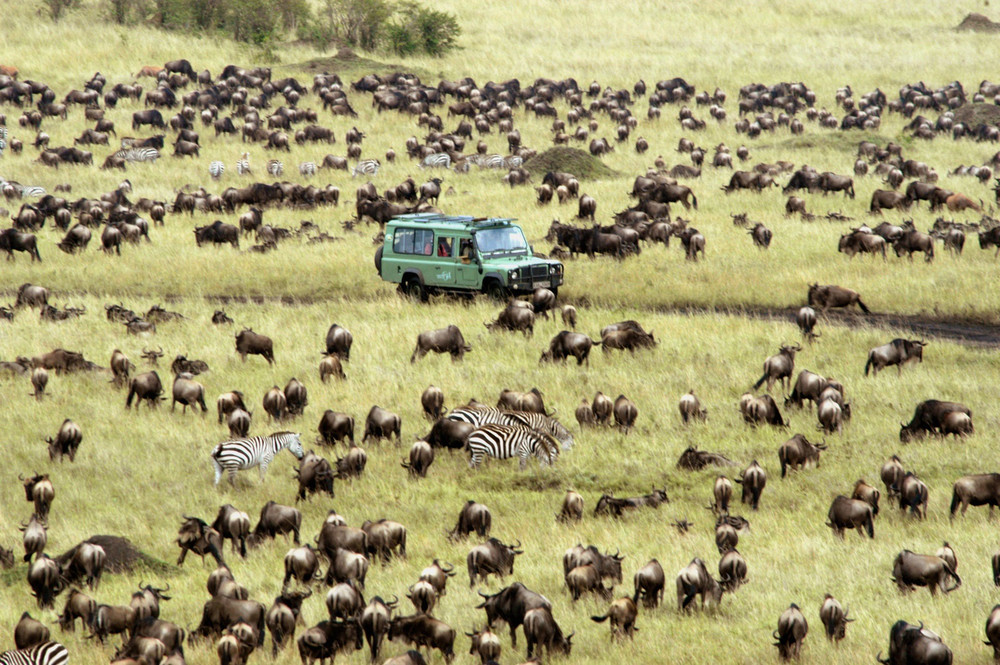 Migracion Kenia